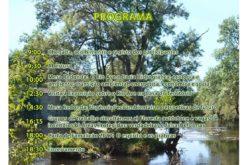 7/10 Ação Ecológica – Transição Sustentável e Regeneração