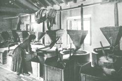 Azenhas, moinhos e açudes no Vale do Ave | História, cultura, património e inovação: Parte I – Introdução