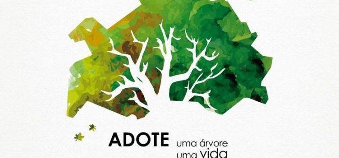 25/11 | Adote uma árvore, adote uma vida