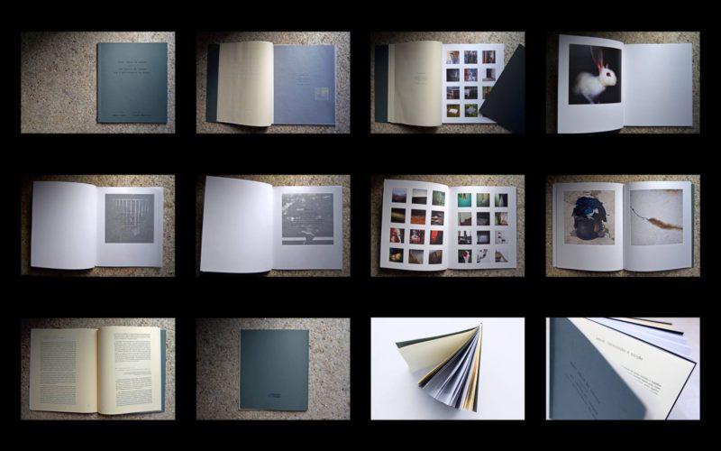 Diogo Martins | Crowdfunding para o livro Dizer adeus às coisas seguido de uma teoria da imagem (ou a performance do mundo)