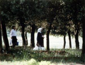 Abbas Kiarostami - Através das oliveiras (1994) - Vítor Ribeiro, para Vila Nova - Famalicão Online: O olhar do espectador constrói o filme 3