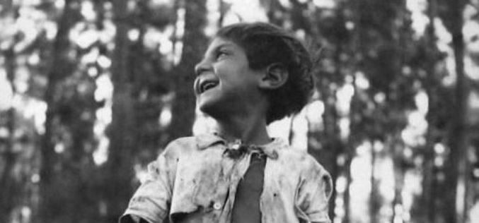 4/1 a 18/2 – Eduardo Teixeira Pinto. O prazer de fotografar, no Museu Bernardino Machado