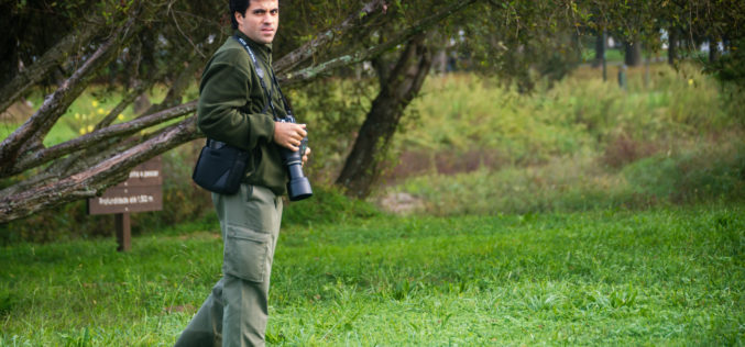 Entrevista | António Cruz (Avifauna do Parque da Devesa): Tenho um particular fascínio por duas aves – o Guarda-rios e a Coruja-das-torres