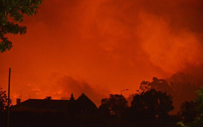 Proteção Civil | Vila Nova de Famalicão e Barcelos apostam na prevenção de incêndios