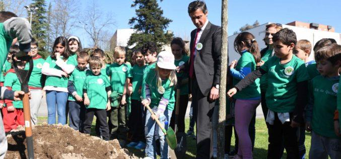 Dia da Árvore | Municípios de Famalicão e Guimarães assinalam data com a plantação de espécies autóctones