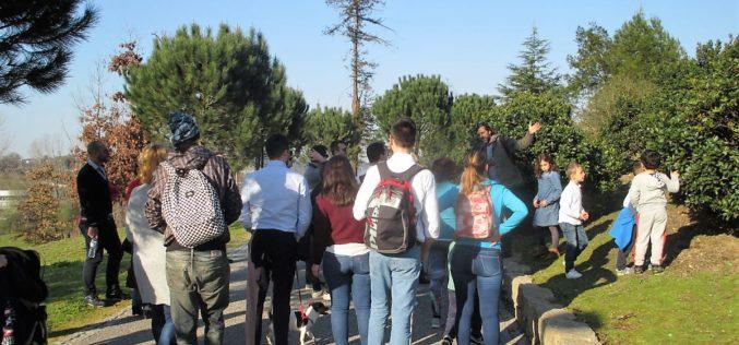 BioBlitz | Vasco Flores Cruz: Identificar o maior número possível de espécies num passeio pelo parque
