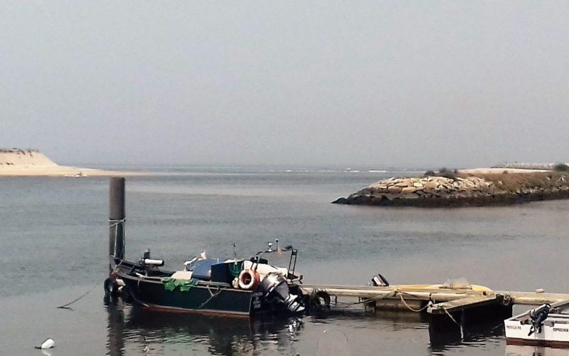 Pesca | Bloco pretende alargamento do período de apoio do FCSPP para pescadores impedidos de sair para o mar