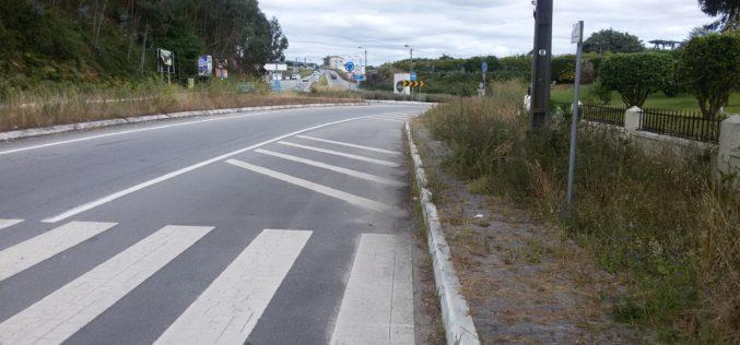 Riscos | PSD preocupado com falta de limpeza das bermas das estradas nacionais
