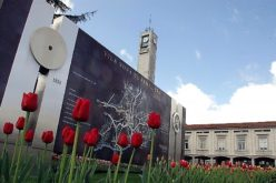 Município | Dia do Concelho assinalado com entrega dos Selos Visão'25