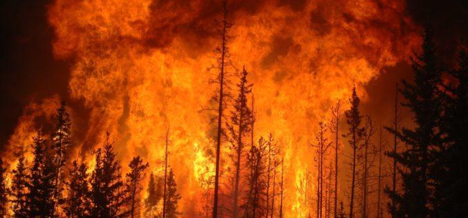 RiskAquaSoil | Incêndios afetam a qualidade da água, revela estudo de Alexandre Tavares da Univ. de Coimbra