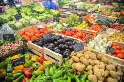 Alimentação | Veganismo consciente
