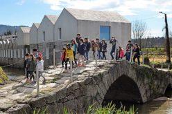 Mundo Verde | Estrutura de Missão – Guimarães 2030. Município unido em torno da sustentabilidade
