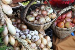 Feiras | Portugal Rural. Feira de Atividades Agrícolas leva vida do campo à cidade em terras de terra, rio e mar