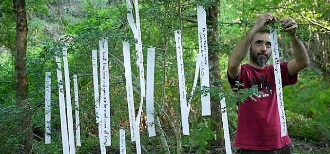 Ambientar-se | Famalicão em Transição apresenta Floresta Eterna, de Evgenia Emets, e debate políticas florestais