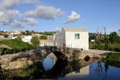 Ambiente | Pegada Ecológica e biocapacidade de Guimarães apresentadas ao público