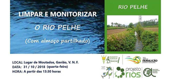 Projeto Rios | Agrupamento de Escolas D. Sancho I sai ao Rio Pelhe para limpar o rio