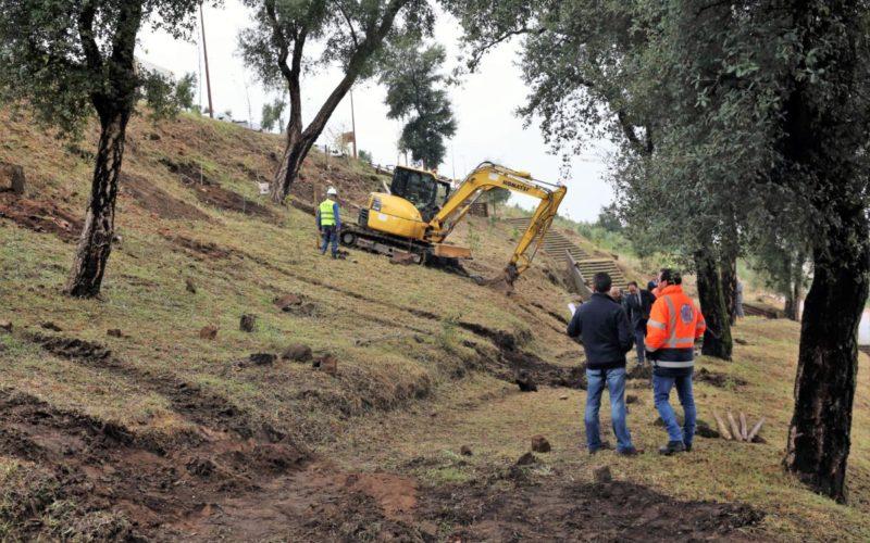 Ambiente | Reflorestação avança no Monte do Picoto com plantação de 2000 novas árvores