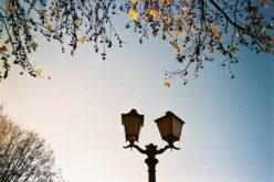 Fotografia | ´As Lojas com História´ de Braga são o tema do XV Concurso Municipal de Fotografia