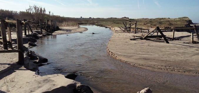 Ambiente | Esposende reabilita ribeiras do litoral concelhio