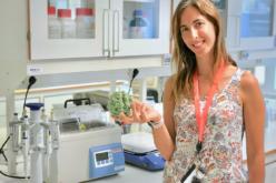 Saúde | Eva Cunha: Quase todos conhecemos pelo menos uma pessoa que sofreu cancro no estômago
