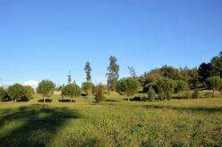 Ambiente | Em Famalicão 2017-2018 — Um novo impulso à cidadania ambiental?