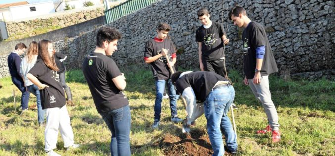Ambiente | Famalicão incentiva reflorestação do território