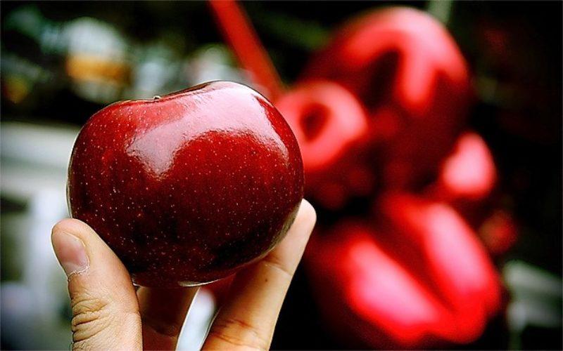 Saúde | Algumas sugestões para uma alimentação saudável em 2019