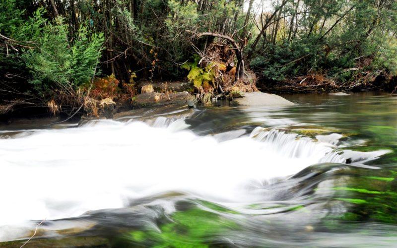 Colaboração | Braga une-se na preservação da Água