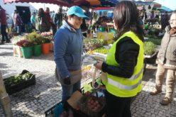 Consumo | 'Mercado E-Cool' promove desenvolvimento sustentável em Esposende