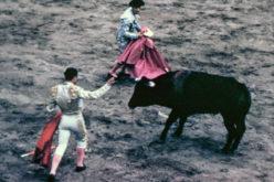 Tradições | Tauromaquia e o pseudo-argumento da liberdade