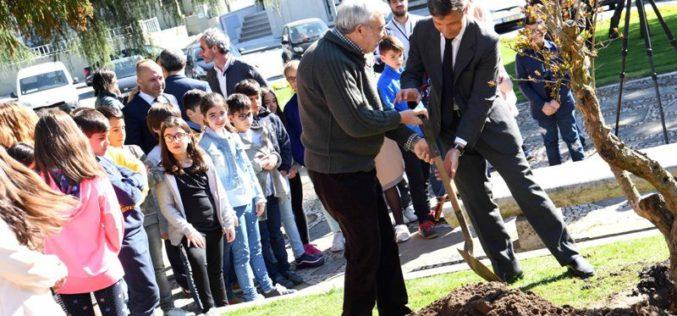 Primavera | Árvores e Poesia dão as mãos em Famalicão