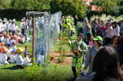 Floresta | Dia da Árvore assinalado com plantação de árvores pela Eurostyle Systems e a EBS de Arga e Lima