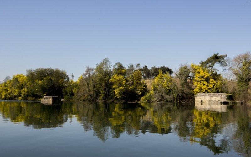 Fruir | Barcelos instala ancoradouros no Rio Cávado