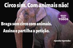 Circo | Braga para Todos insta Ricardo Rio a concretizar 'Braga, Cidade Amiga dos Animais'
