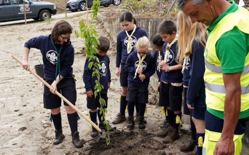 Ambiente | Brigada Verde de Serzedelo e Calvos dá-se a conhecer e apresenta plano de ação
