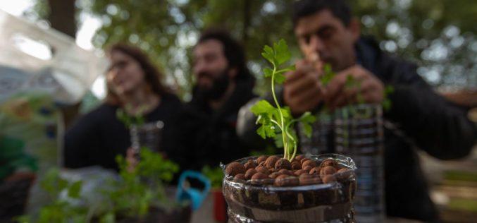 Bem-estar | Horticultura Terapêutica