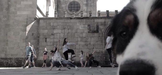 Ensino | Braga atribui Bolsas de estudo para Dança e Música