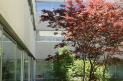 Ensino | Escola de Psicologia da UMinho celebra 10 anos de vida