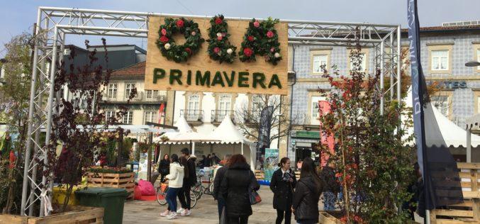 Comunidade | 'Olá Primavera' regressa a Barcelos
