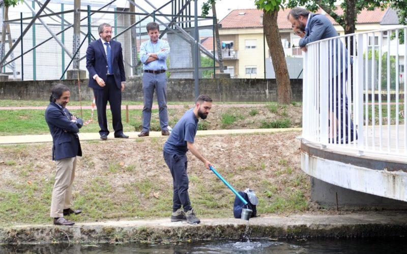Água | Município de Braga monitoriza qualidade da água do rio Este
