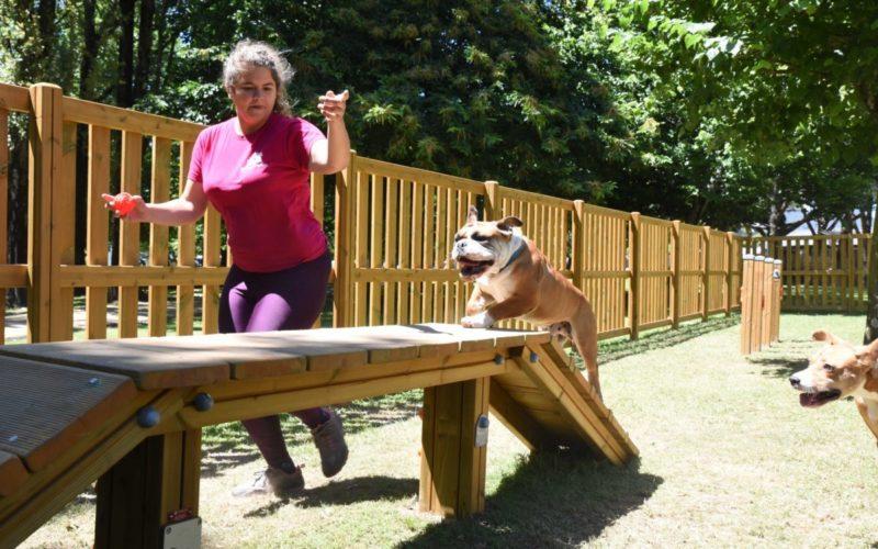 Animalia | Famalicão abre Parque Canino em Sinçães