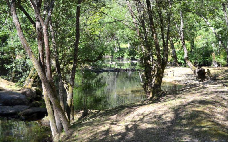 Rio Ave | Laboratório da Paisagem de Guimarães vê aprovada candidatura ao Fundo Ambiental