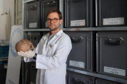Investigação | 'CADOES', o programa informático que identifica e caracteriza o sexo de esqueletos humanos