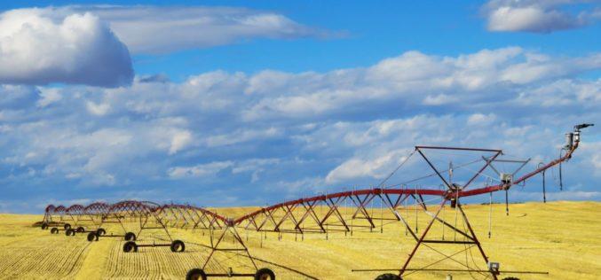 Clima | É indispensável mudar a alimentação, a agricultura e a floresta