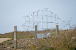 Ambiente | Viana do Castelo instala estruturas gigantes em formato de peixe para promover valorização de resíduos