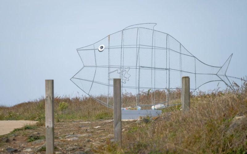 Ambiente   Viana do Castelo instala estruturas gigantes em formato de peixe para promover valorização de resíduos