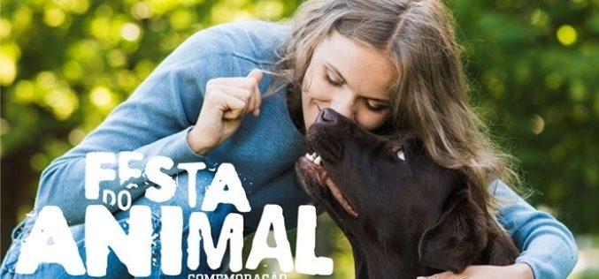 Animalia   Trofa assinala Dia do Animal com Feira de Adoção