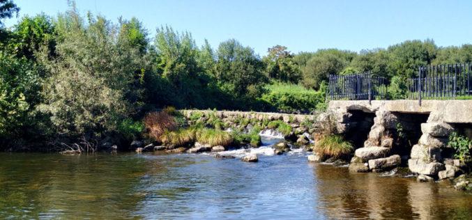 Ambiente | 'O Ave para Todos' pretende valorizar e promover o rio Ave a partir de Guimarães