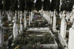 Espiritualidade | A ilusão da morte e a dimensão espiritual da vida