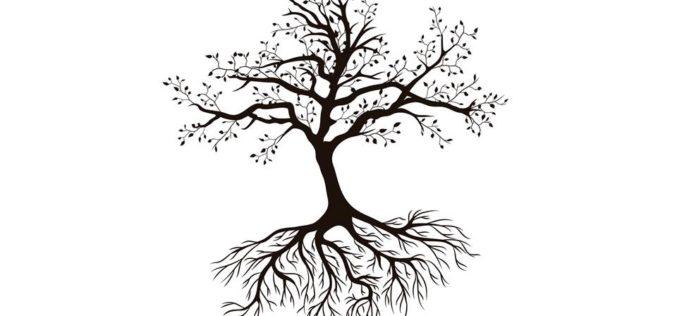 Comunidade | Uma espiritualidade a partir de baixo